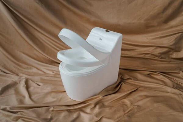 Euphony Training Potty with Flush Sound by Malaysia Toys