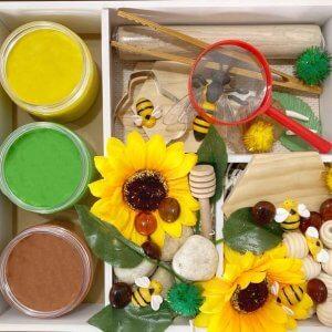 Honey Bee Playdough Activity Kit Box by Malaysia Toys