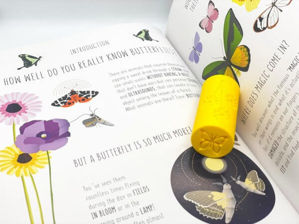 Playdough Rollers - Garden Bugs by Malaysia Toys