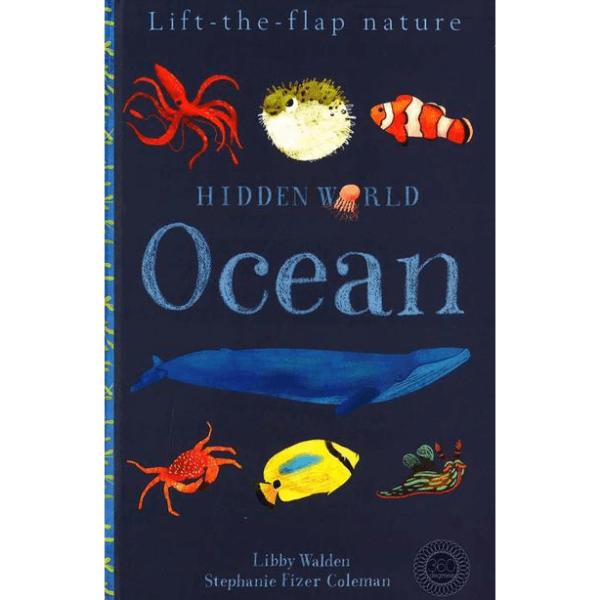 Hidden World Ocean (Libby Walden) by Malaysia Toys